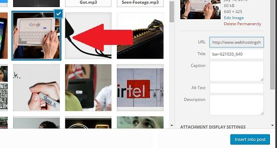 How to Insert Relative Image URLs in WordPress