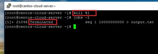 how to run a linux process in the background