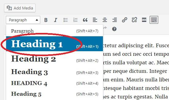 How to Remove H1 Headings from the WordPress Editor Dropdown