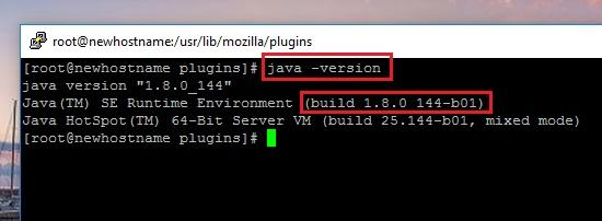 How to Install the Java SE Runtime Environment on Linux