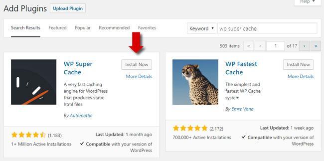Install the WP Super Cache Plugin for WordPress